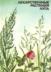 medicinal_plants_of_meadows